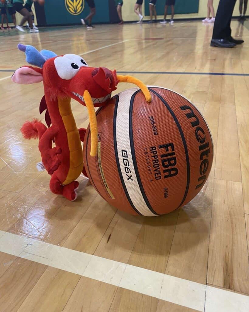 Basket-ball-feminin-12-octobre-819x1024.jpg